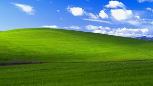 the image for the most popular windows wallpaper ever was taken 20