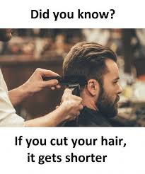 dopl3r com memes did you know if you cut your hair it gets