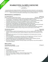 creative professional resume templates best professional resume template prettify co