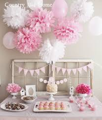 1st birthday party decorations at home country home january 2014 first birthday ideas