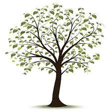 clip family tree family history event ideas