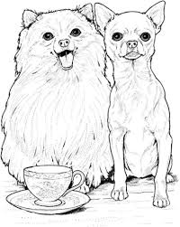 dog and puppy coloring pages pomeranian dog and chihuahua coloring page free printable