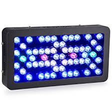 led reef lighting reviews amazon com ledgle led aquarium light dimmable 300w reef aquarium
