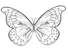 100 ideas butterfly coloring printable www