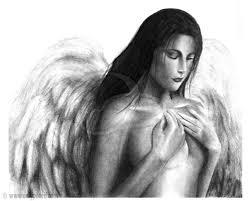 angel 3 onlypencil com wildlife pencil drawings by lisandro peña