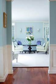 Best Blue In Rooms Images On Pinterest Living Room Ideas - Living room design blue