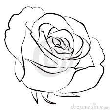 rose stock photos u2013 222 319 rose stock images stock photography
