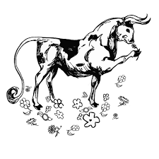 the bull coloring pages