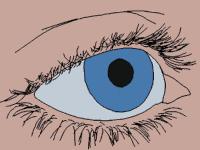 Rolls Eyes Meme - rolling eyes gifs popkey