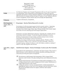 Examples Of A Resume Profile by 6 Exzample Of Writting A Cv Financial Statement Form