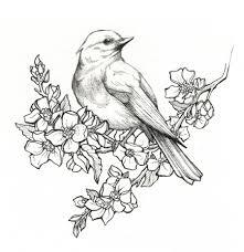 flying bird drawing by linn warme tattoo inspiration pinterest
