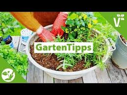 Houston Urban Gardeners - 44 best volmary urban gardening inspirationen für balkon und