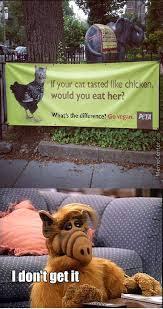 Alf Meme - funny for alf meme funny www funnyton com