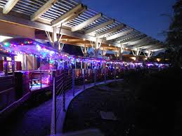 Zoo Of Lights Houston by Trains To Watch And Trains To Ride Houston Has Them All This