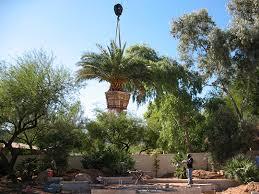 Southwest Landscape Design by Landscaping Design Phoenix Gardens Southwest