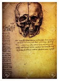 Leonardo Da Vinci Human Anatomy Drawings Ancient Anatomical Drawings Made By Leonardo Davinci A Study