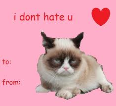 grumpy cat valentines adorable cat themed s day cards cat fancast