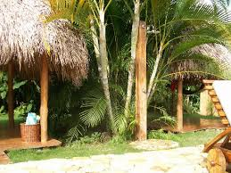 Outdoor Pool Showers - outdoor pool shower and hammoch huts picture of casa chameleon