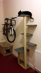 how to select best cat tree and cat tree furniture planana