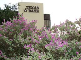 Flower Delivery San Angelo Tx - 40 best san angelo tx images on pinterest san angelo texas