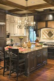 41 best kitchen images on pinterest home kitchen and dream kitchens