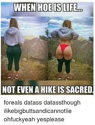 25 best memes about datass datass memes