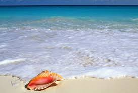 beachside tag wallpapers beachside yucatan peninsula mexico