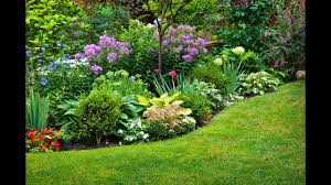 10 Best Perennials And Flowers by Perennials Plants And Flowers For Shade See The Descriptions For