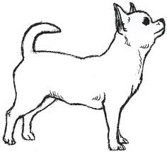 coloring pages chihuahua puppies chihuahua coloring pages freecolorngpages co