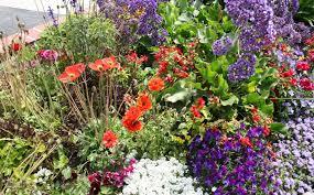 perennial flower bed designs u2014 tedx designs choosing the best