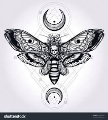43 best insect tattoos design and ideas