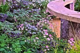 Flower Area - chelsea flower show 2011 nigel dunnett