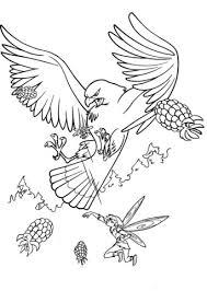 big hawk coloring free printable coloring pages