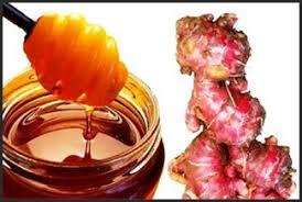 ramuan pembesar penis pria alami madu asli dengan tradisional