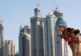 Seeking Abu Dhabi In Emirates Competition Abu Dhabi Outclasses Dubai Features