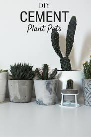 best 25 cement pots ideas on pinterest diy cement planters