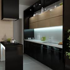 fabulous black color wooden kitchen cabinets features double door