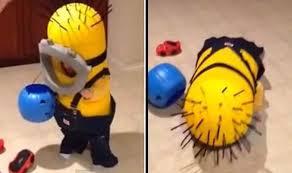 i u0027m okay u0027 cute moment toddler dressed as minion loses balance out