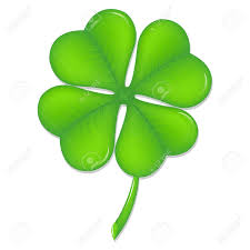 green clover symbol st patrick u0027s day isolated on white