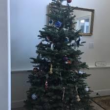 silver star tree farms 19 reviews christmas trees 2102 3rd