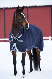 Rambo Lightweight Turnout Rug 103 Best Autumn Winter Blankets 2015 Images On Pinterest Winter
