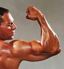 jamu kuat perkasa dan alami jualherbalperkasa jamu kuat jamu