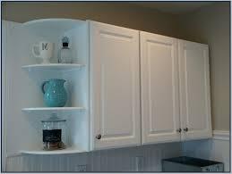 kitchen cabinet corner shelf 43 kitchen cabinet corner shelves corner shelves on kitchen