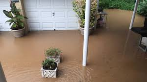 backyard flood but lets have fun with it pics marvelous flooding