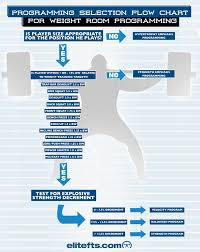 a simple flow chart for athlete programming elite fts