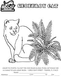my name coloring pages coloring pages