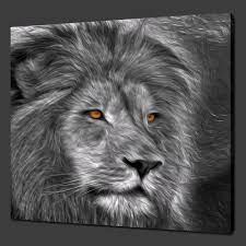 lion print canvas print pictures high quality handmade free next day delivery
