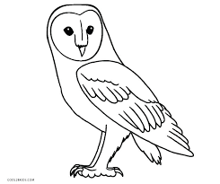 terrific coloring pages of owls with additional line drawings