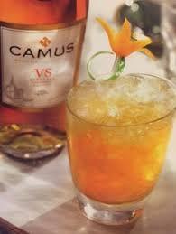 l tat de si e camus r um 12 best cocktail camus images on cocktail cocktails and