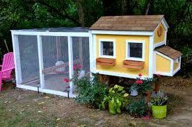 Backyard Chicken Coop Ideas On The Farm Nice Backyard Chickens Coop 4 Clotheshops Us